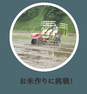 お米作りに挑戦!